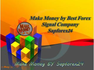 Best forex signals company