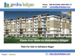 Flats for Sale in Sahakara Nagar
