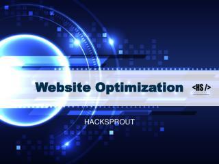 Website optimization service