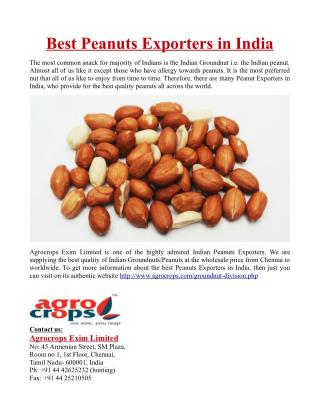 Best Peanuts Exporters in India