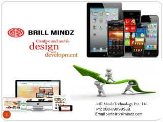Brill mindz technology pvt Ltd.