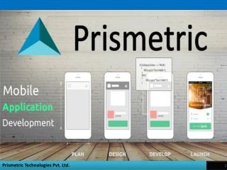 Mobile App Methodology- Prismetric