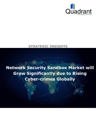 Network Security Sandbox Market will Grow Significantly due to Rising Cyber-crimes Globally