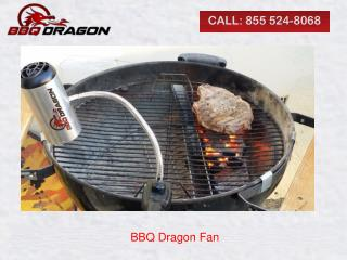 BBQ Dragon Fan