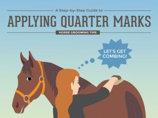 A Step by Step Guide to Applying Quarter Marks