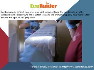 Most Effective Natural Bed Bug Killers