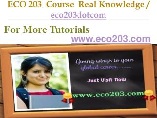 ECO 203 Course Real Knowledge / eco203dotcom