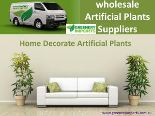 Buy Attractive Artificial Plants in Australia