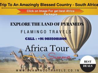 Enjoy A good Trip with South Africa Tour Packages