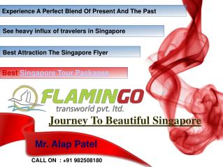 Best Places To Visit In During Singapore Tour