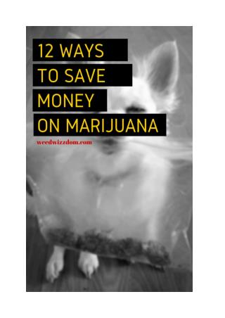 12 Awesome Ways How To Save Money on Marijuana