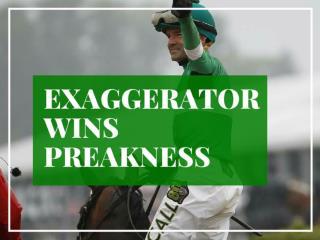 Exaggerator wins Preakness