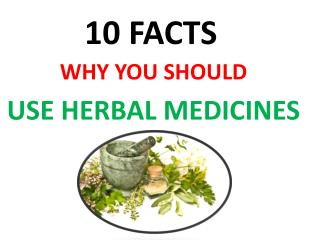 10 FACTS USE HERBAL MEDICINES WHY YOU SHOULD USE HERBAL MEDICINES