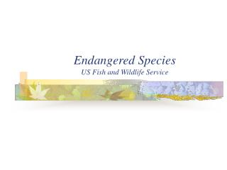 Endangered Species US Fish and Wildlife Service