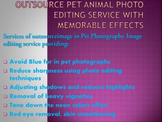 Outsource Pet Photoshop Image editing service for affordable price
