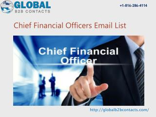 Chief Financial Officer Email & Mailing List