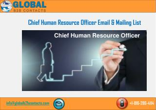 Chief Human Resource Officer Email & Mailing List