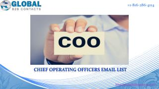 Chief Operating Officers Email List