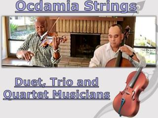 Ocdamia Strings - Duet, Trio and Quartet Musicians