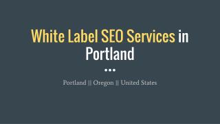 White Label SEO Services in Portland
