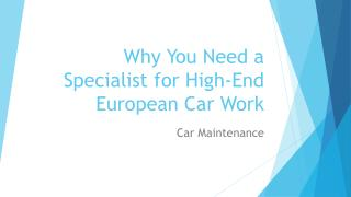 Why You Need a Specialist for High-End European
