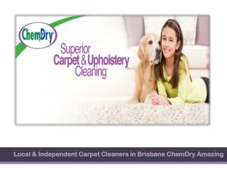 Local & Independent Carpet Cleaners in Brisbane ChemDry Amazing