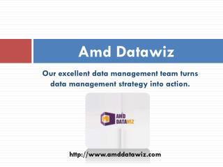 Business Intelligence and Data Management Company