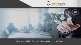 Web Vulnerability scanner & Remediation
