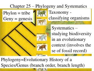 Chapter 25   Phylogeny and Systematics