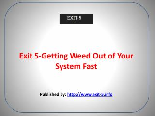 Exit 5-Getting Weed Out of Your System Fast