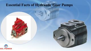Essential Facts of Hydraulic Gear Pumps