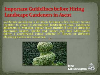 Important Guidelines before Hiring Landscape Gardeners in Ascot