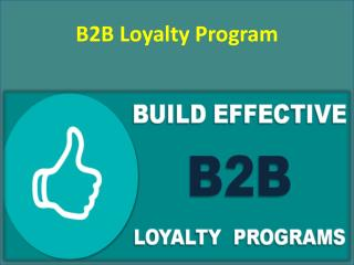 B2B Loyalty Program