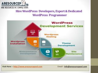 Hire Wordpress developers, Expert & Dedicated Wordpress Programmer