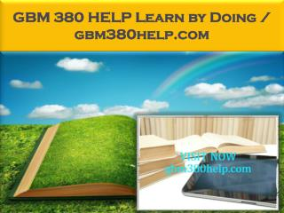 GBM 380 HELP Learn by Doing / gbm380help.com