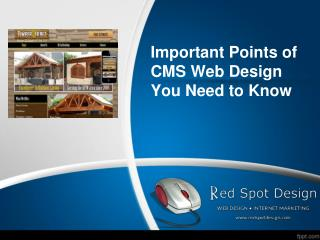 Important Points of CMS Web Design You Need to Know