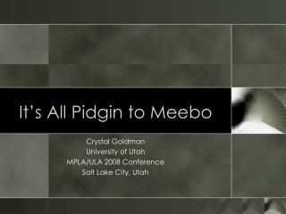 It s All Pidgin to Meebo