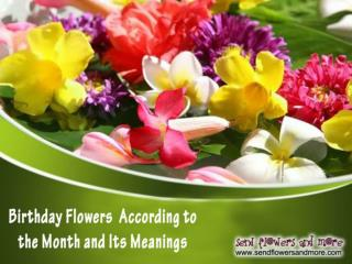 Send Birthday Flowers According to the Month and Its Meanings