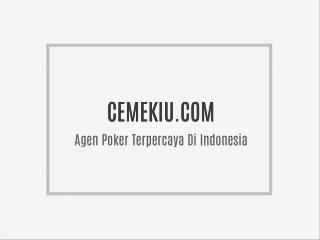 CEMEKIU.COM | Agen Bandar Poker Terpercaya Di Indonesia