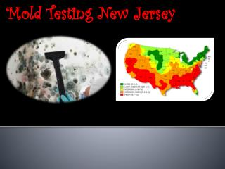 Mold Testing New Jersey