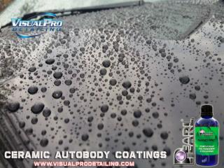 Paint Correction and Interior Detailing in Johnston City, IL