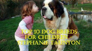Top 10 Dog Breeds For Children � Stephanie Taunton