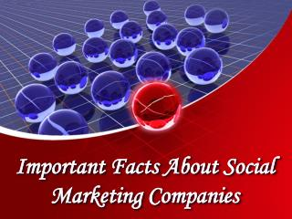 Important Facts About Social Marketing Companies