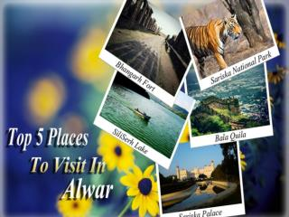 Top 5 Places To Visit In Alwar: Myalwar.com