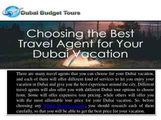 Choosing the Best Travel Agent for Your Dubai Vacation
