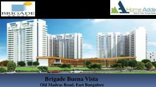 Brigade Buena Vista