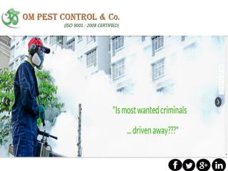 Get professional Pest Control Company in Odisha