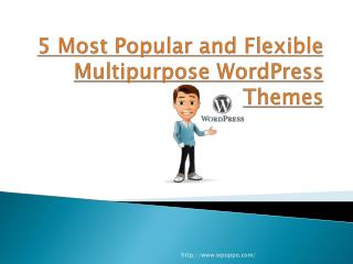 Discover the Five Amazing WordPress Website Themes