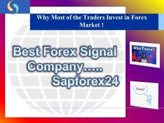 Forex Market | Sapforex24 | ForexSignalCompany | Comex