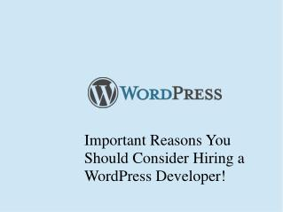 Important Reasons You Should Consider Hiring a WordPress Developer